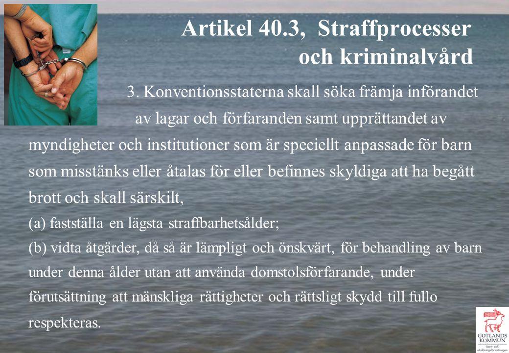 3. Konventionsstaterna skall söka främja införandet av lagar och förfaranden samt upprättandet av myndigheter och institutioner som är speciellt anpas