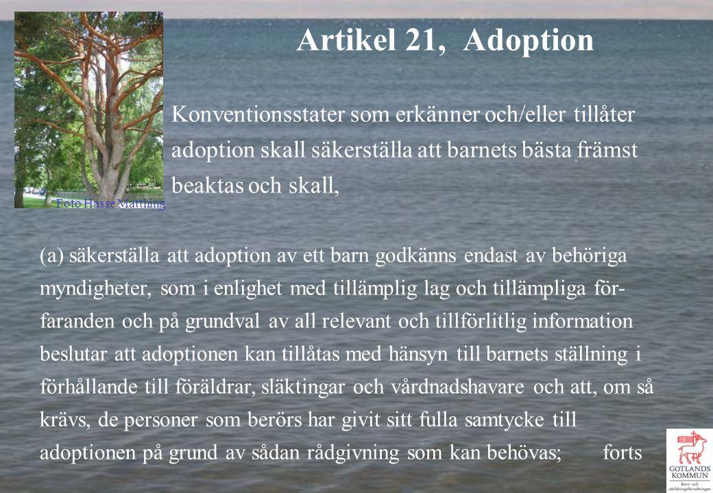 Konventionsstater som erkänner och/eller tillåter adoption skall säkerställa att barnets bästa främst beaktas och skall, (a) säkerställa att adoption av ett barn godkänns endast av behöriga myndigheter, som i enlighet med tillämplig lag och tillämpliga för- faranden och på grundval av all relevant och tillförlitlig information beslutar att adoptionen kan tillåtas med hänsyn till barnets ställning i förhållande till föräldrar, släktingar och vårdnadshavare och att, om så krävs, de personer som berörs har givit sitt fulla samtycke till adoptionen på grund av sådan rådgivning som kan behövas; forts Artikel 21, Adoption Foto Hasse Matthing