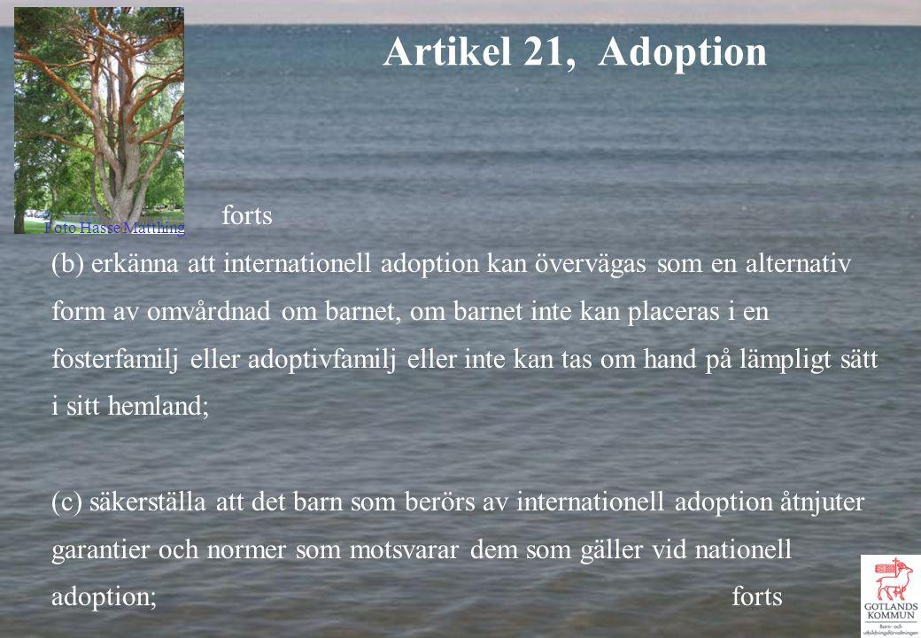 forts (b) erkänna att internationell adoption kan övervägas som en alternativ form av omvårdnad om barnet, om barnet inte kan placeras i en fosterfamilj eller adoptivfamilj eller inte kan tas om hand på lämpligt sätt i sitt hemland; (c) säkerställa att det barn som berörs av internationell adoption åtnjuter garantier och normer som motsvarar dem som gäller vid nationell adoption; forts Artikel 21, Adoption Foto Hasse Matthing