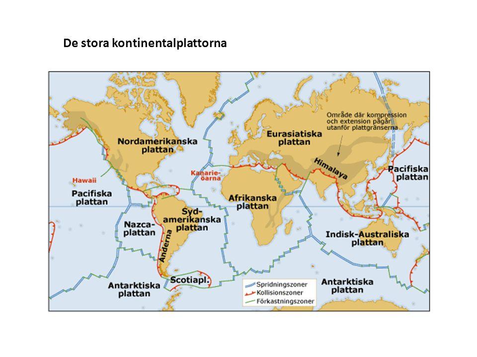 De stora kontinentalplattorna