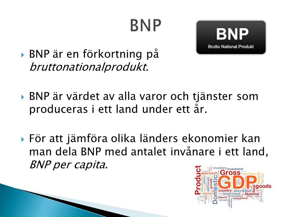  BNP är en förkortning på bruttonationalprodukt.
