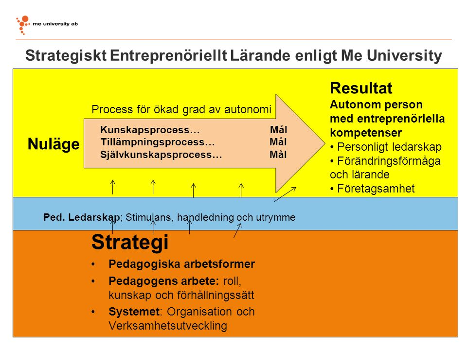 Strategiskt Entreprenöriellt Lärande enligt Me University Strategi Pedagogiska arbetsformer Pedagogens arbete: roll, kunskap och förhållningssätt Syst