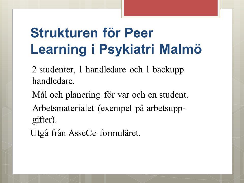 Strukturen för Peer Learning i Psykiatri Malmö 2 studenter, 1 handledare och 1 backupp handledare. Mål och planering för var och en student. Arbetsmat