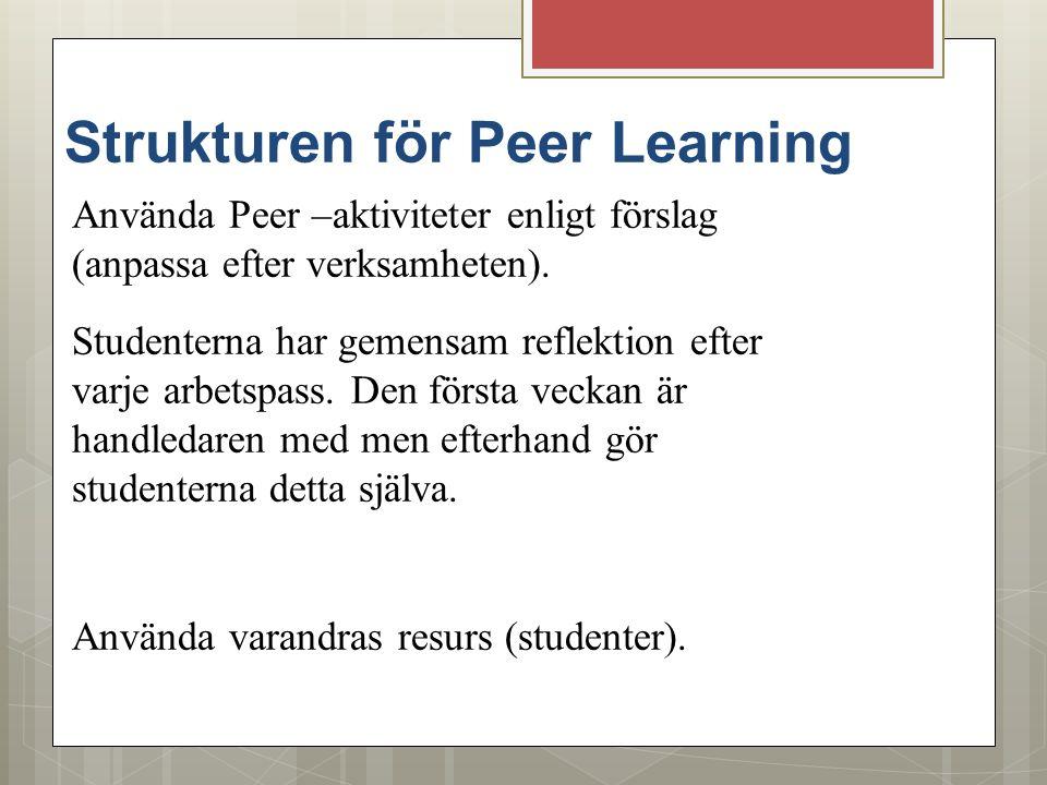 Strukturen för Peer Learning Använda Peer –aktiviteter enligt förslag (anpassa efter verksamheten). Studenterna har gemensam reflektion efter varje ar