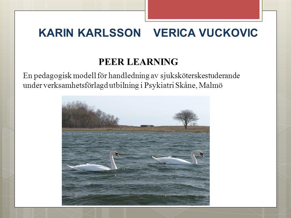 KARIN KARLSSON VERICA VUCKOVIC PEER LEARNING En pedagogisk modell för handledning av sjuksköterskestuderande under verksamhetsförlagd utbilning i Psyk