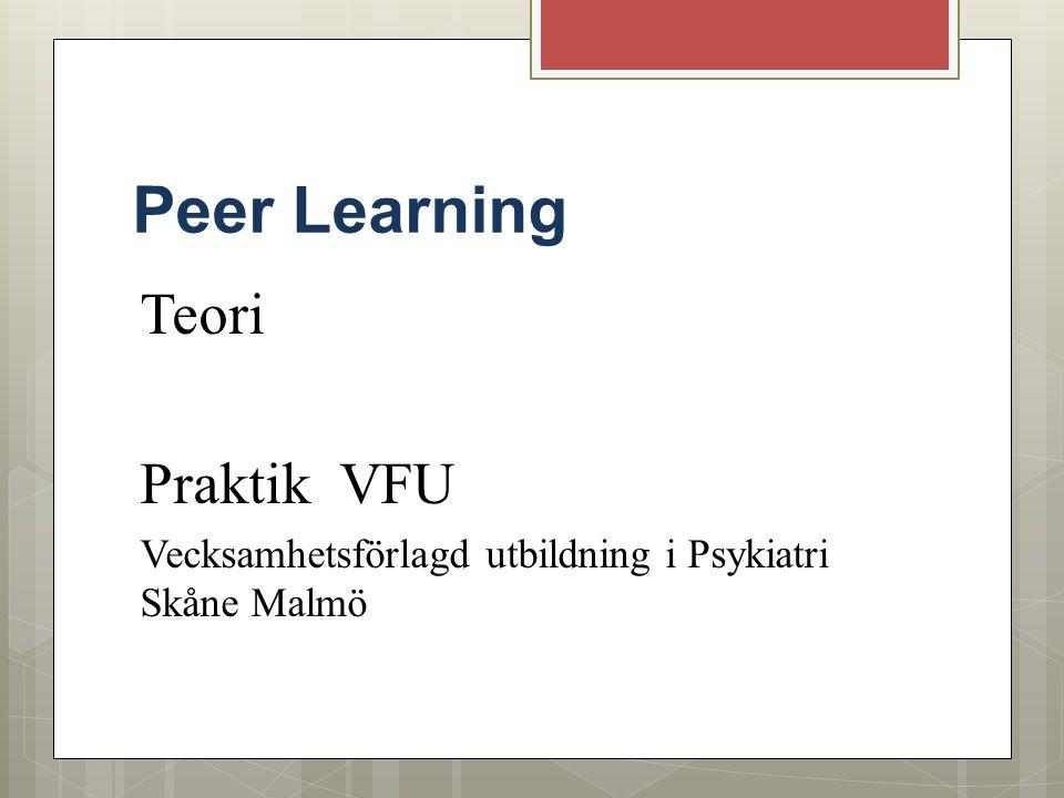Peer Learning Teori Praktik VFU Vecksamhetsförlagd utbildning i Psykiatri Skåne Malmö