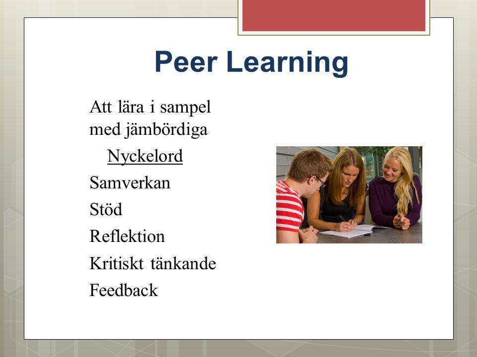 Peer Learning Att lära i sampel med jämbördiga Nyckelord Samverkan Stöd Reflektion Kritiskt tänkande Feedback