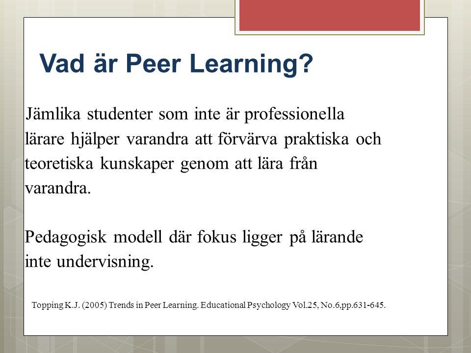 Vad är Peer Learning? Jämlika studenter som inte är professionella lärare hjälper varandra att förvärva praktiska och teoretiska kunskaper genom att l