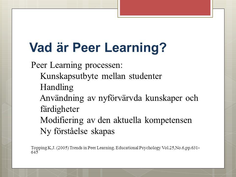 Vad är Peer Learning? Peer Learning processen: Kunskapsutbyte mellan studenter Handling Användning av nyförvärvda kunskaper och färdigheter Modifierin
