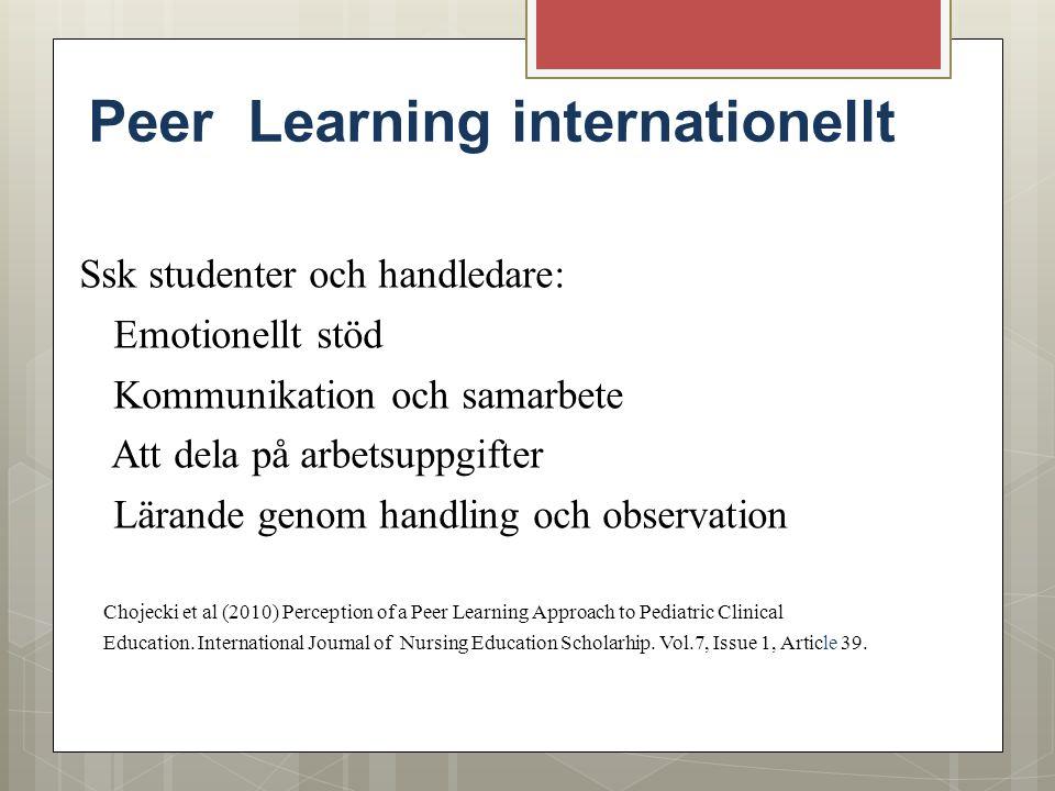 Peer Learning internationellt Ssk studenter och handledare: Emotionellt stöd Kommunikation och samarbete Att dela på arbetsuppgifter Lärande genom han