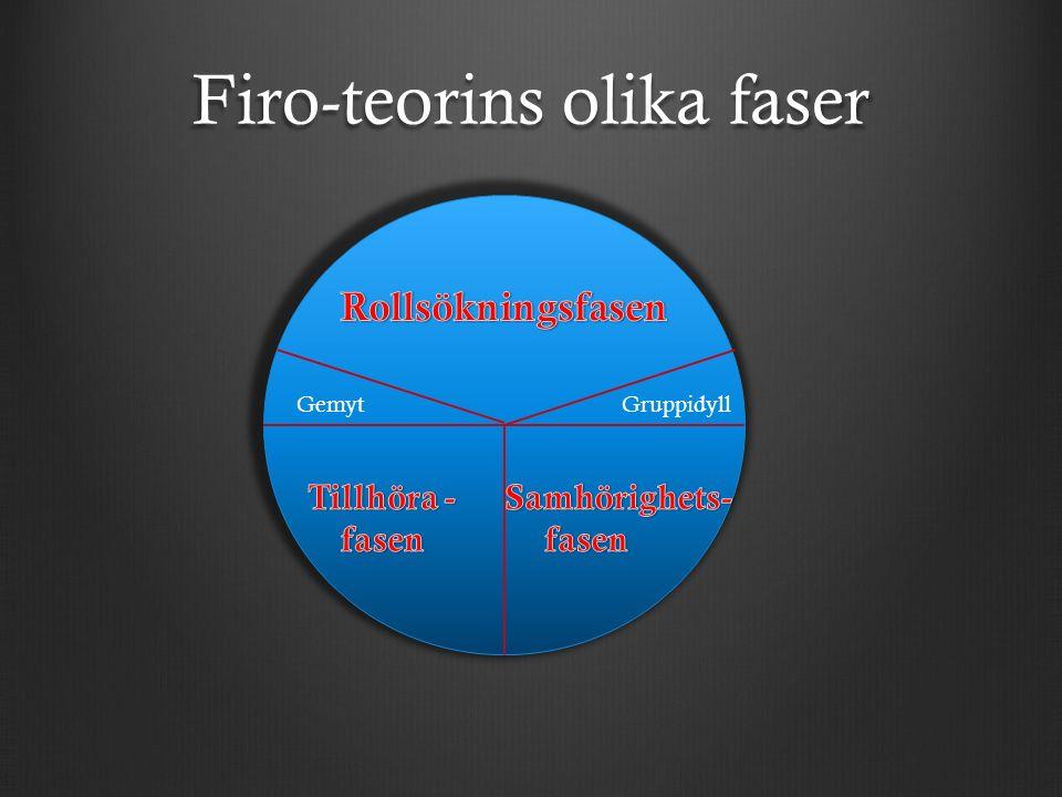 Firo-teorins olika faser GruppidyllGemyt