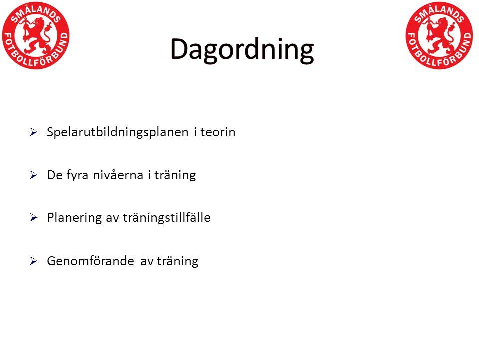  Spelarutbildningsplanen i teorin  De fyra nivåerna i träning  Planering av träningstillfälle  Genomförande av träning