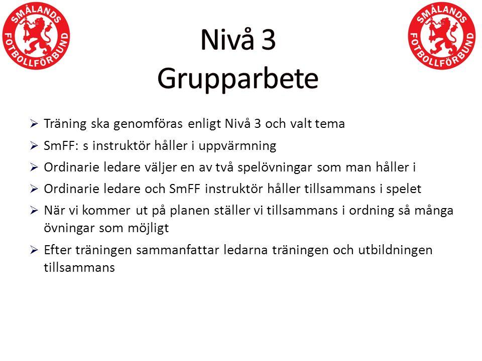  Träning ska genomföras enligt Nivå 3 och valt tema  SmFF: s instruktör håller i uppvärmning  Ordinarie ledare väljer en av två spelövningar som ma