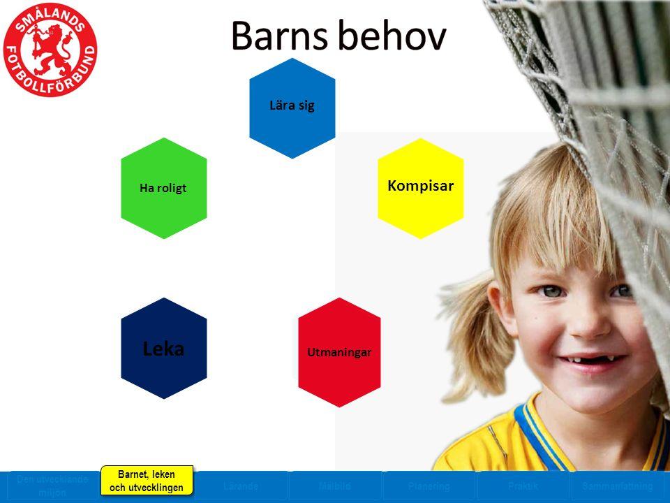 Ha roligt Kompisar Leka Utmaningar Lära sig Den utvecklande miljön Barnet, leken och utvecklingen Barnet, leken och utvecklingen LärandeMålbildPlaneringPraktikSammanfattning