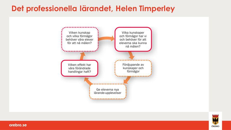 orebro.se Det professionella lärandet, Helen Timperley