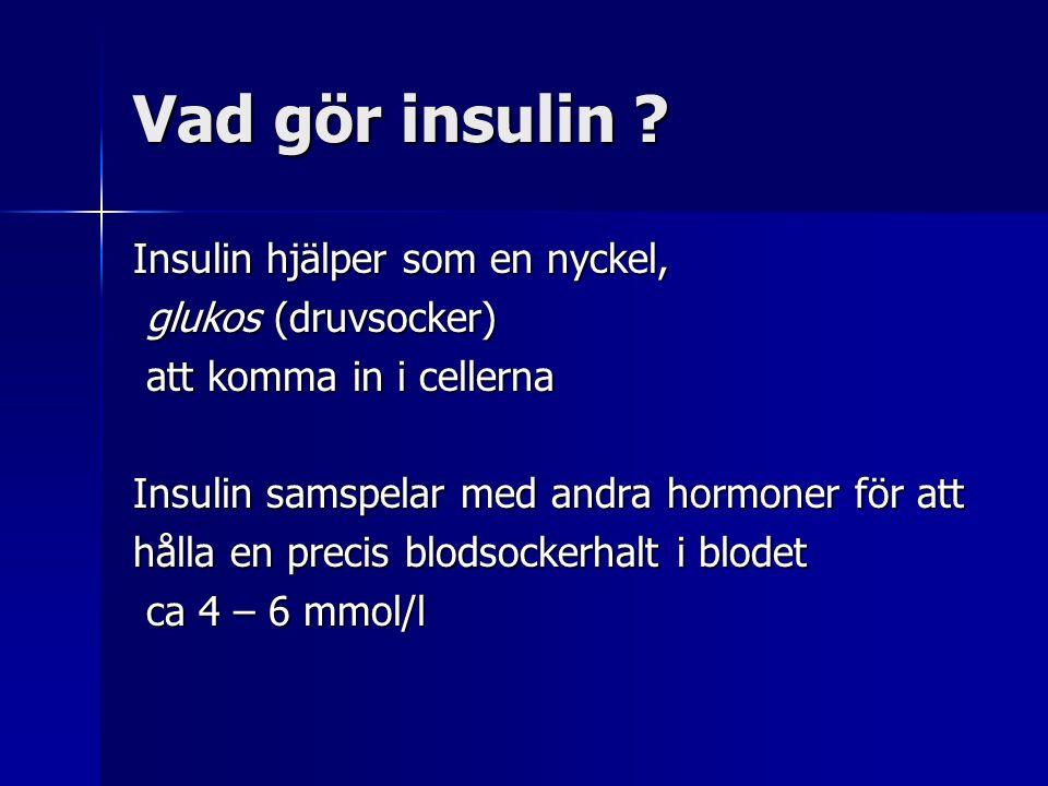 Insulin hjälper som en nyckel, glukos (druvsocker) glukos (druvsocker) att komma in i cellerna att komma in i cellerna Insulin samspelar med andra hormoner för att hålla en precis blodsockerhalt i blodet ca 4 – 6 mmol/l ca 4 – 6 mmol/l Vad gör insulin