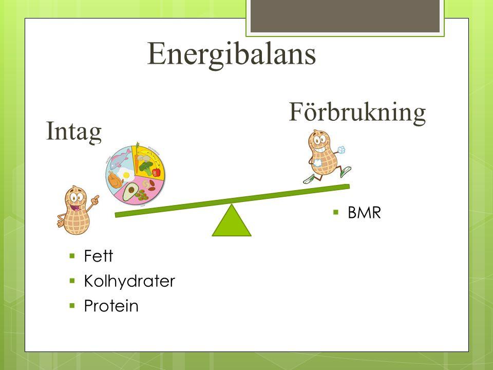 Energibalans Intag Förbrukning  Fett  Kolhydrater  Protein  BMR