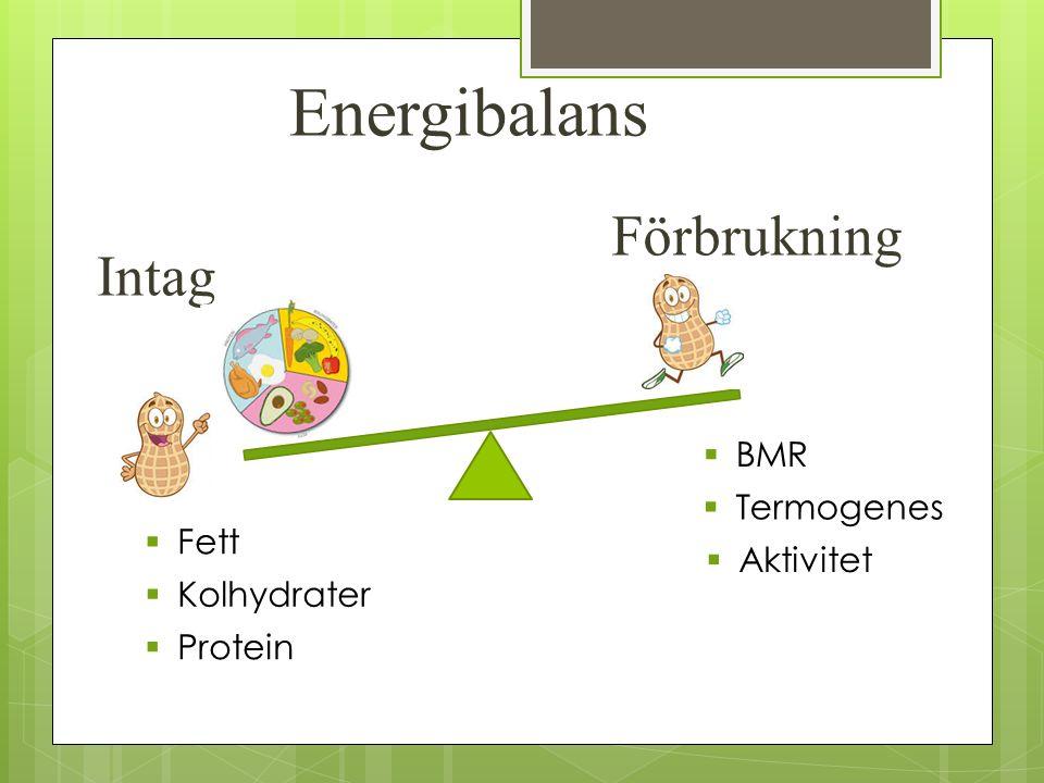 Energibalans Intag Förbrukning  Fett  Kolhydrater  Protein  BMR  Termogenes  Aktivitet