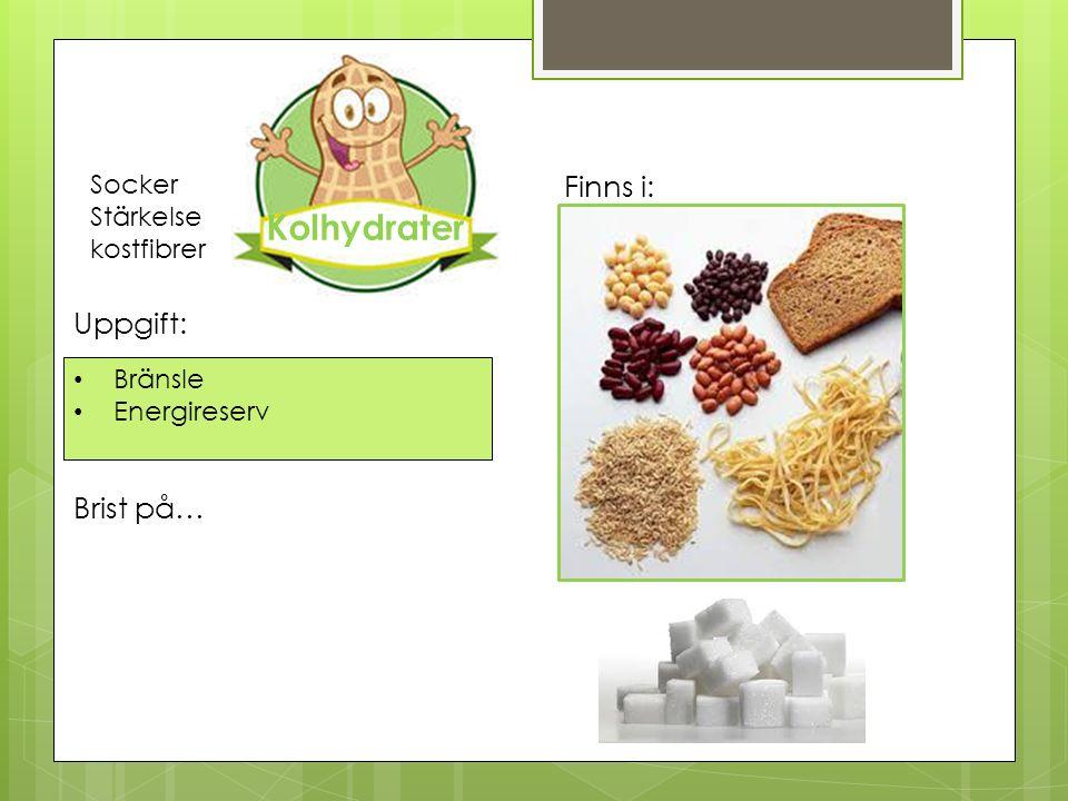 Bränsle Energireserv Uppgift: Finns i: Brist på… Socker Stärkelse kostfibrer Kolhydrater