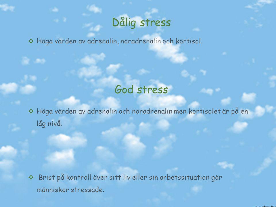 Stressfaser Alarmfasen Innebär att kroppen förbereder sig för att hantera situationen Motståndsfasen Innebär att kroppen har anpassat dig efter det nya situationen.