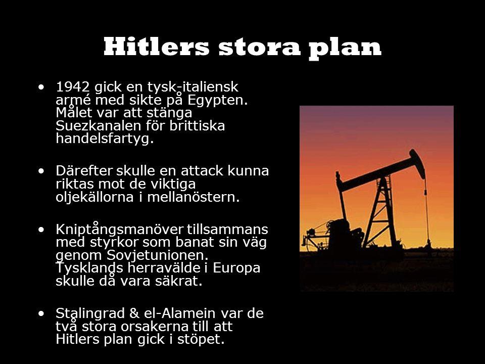 Hitlers stora plan 1942 gick en tysk-italiensk armé med sikte på Egypten. Målet var att stänga Suezkanalen för brittiska handelsfartyg. Därefter skull