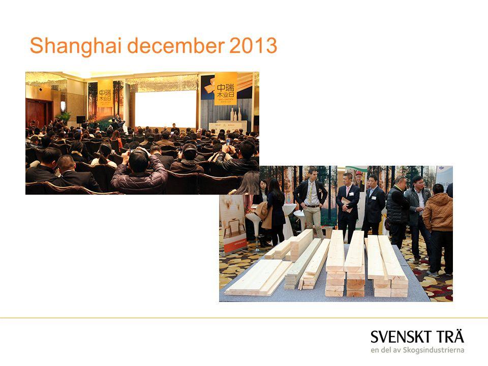 Shanghai december 2013