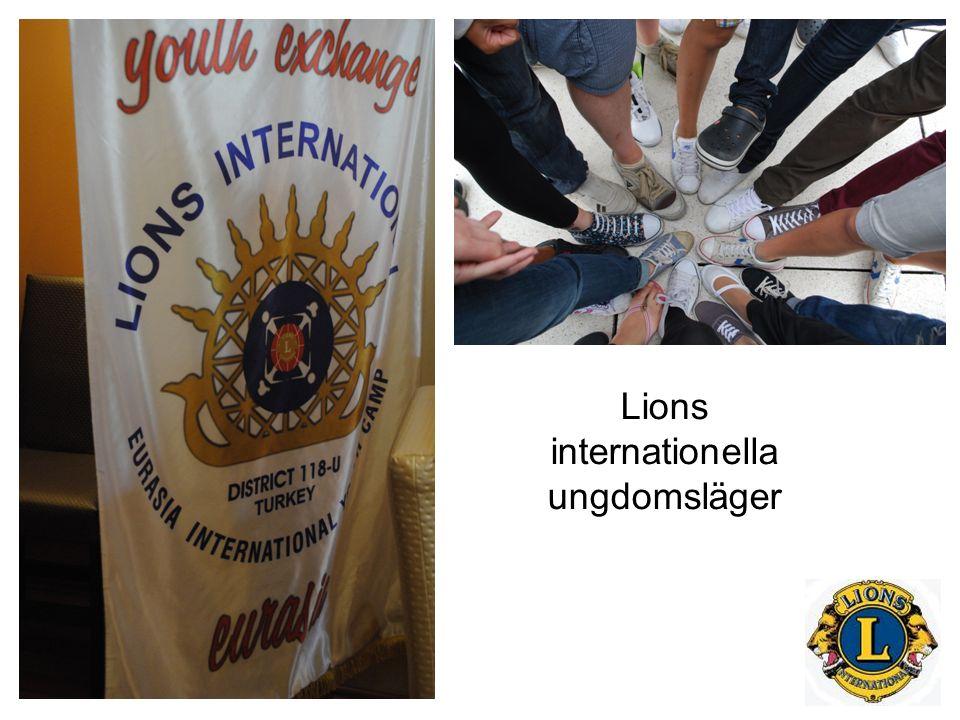 Vad är internationella ungdomsläger.