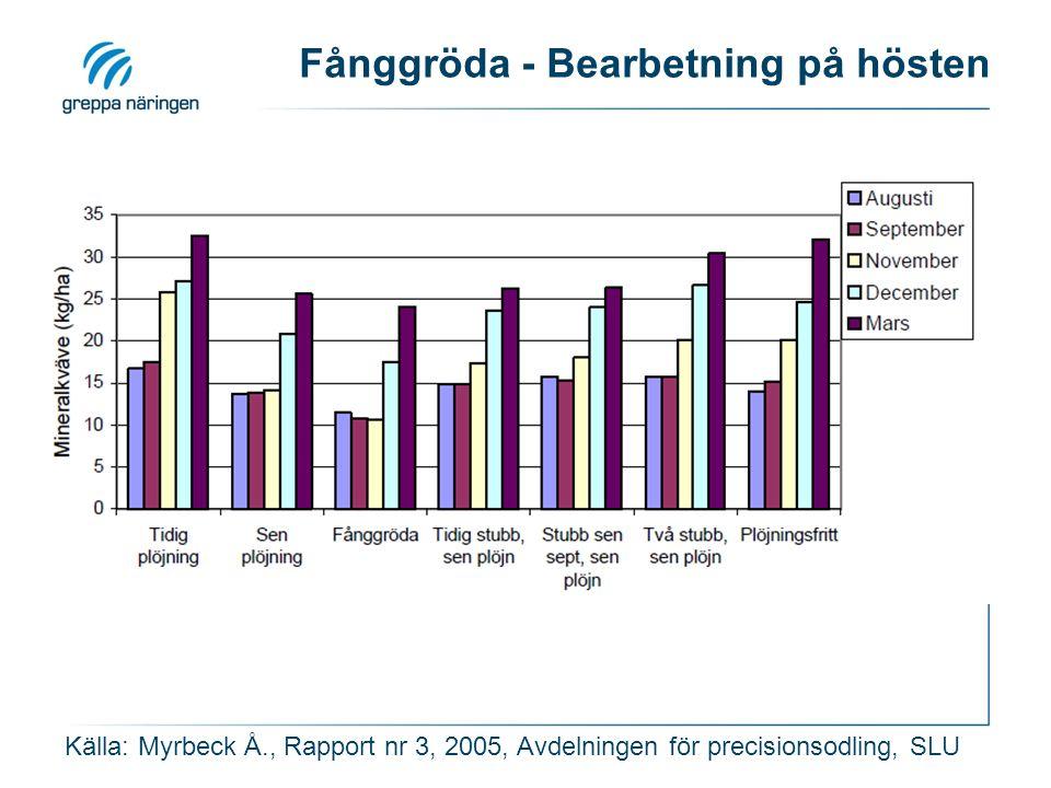 Fånggröda - Bearbetning på hösten Källa: Myrbeck Å., Rapport nr 3, 2005, Avdelningen för precisionsodling, SLU