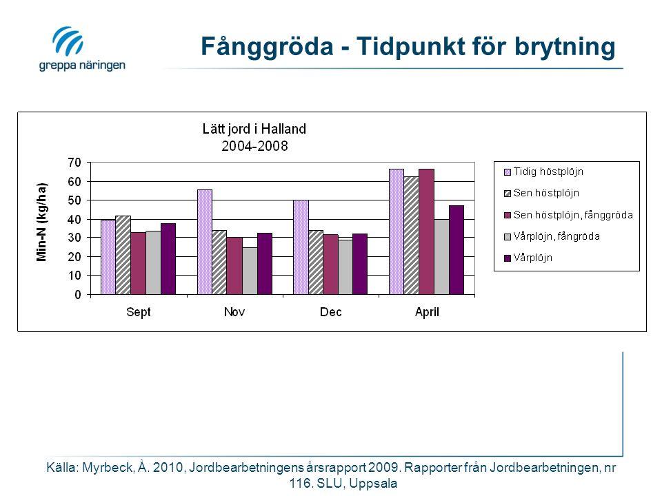 Fånggröda - Tidpunkt för brytning Källa: Myrbeck, Å.