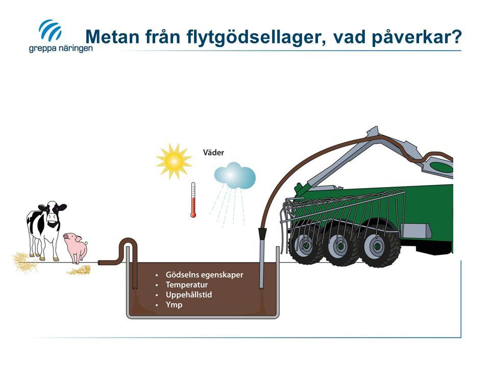 Metan från flytgödsellager, vad påverkar