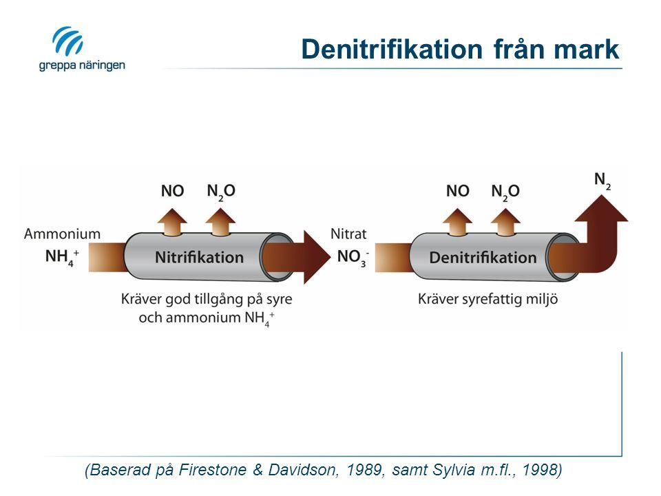 (Baserad på Firestone & Davidson, 1989, samt Sylvia m.fl., 1998) Denitrifikation från mark