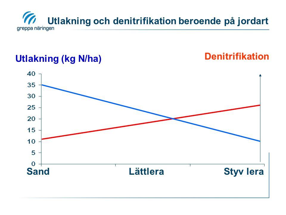 Utlakning och denitrifikation beroende på jordart Sand Lättlera Styv lera Utlakning (kg N/ha) Denitrifikation