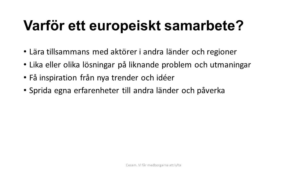 Varför ett europeiskt samarbete? Lära tillsammans med aktörer i andra länder och regioner Lika eller olika lösningar på liknande problem och utmaninga