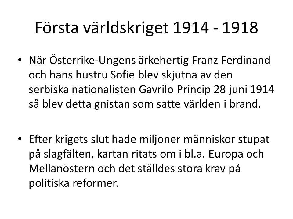 Första världskriget 1914 - 1918 När Österrike-Ungens ärkehertig Franz Ferdinand och hans hustru Sofie blev skjutna av den serbiska nationalisten Gavrilo Princip 28 juni 1914 så blev detta gnistan som satte världen i brand.