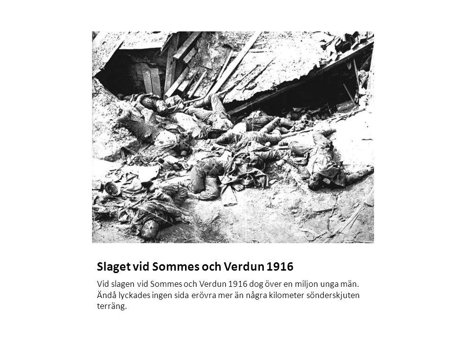 Slaget vid Sommes och Verdun 1916 Vid slagen vid Sommes och Verdun 1916 dog över en miljon unga män.