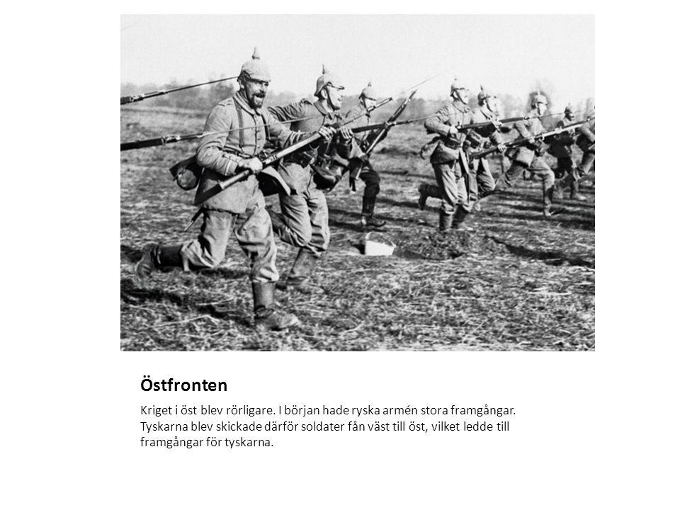 Östfronten Kriget i öst blev rörligare. I början hade ryska armén stora framgångar.