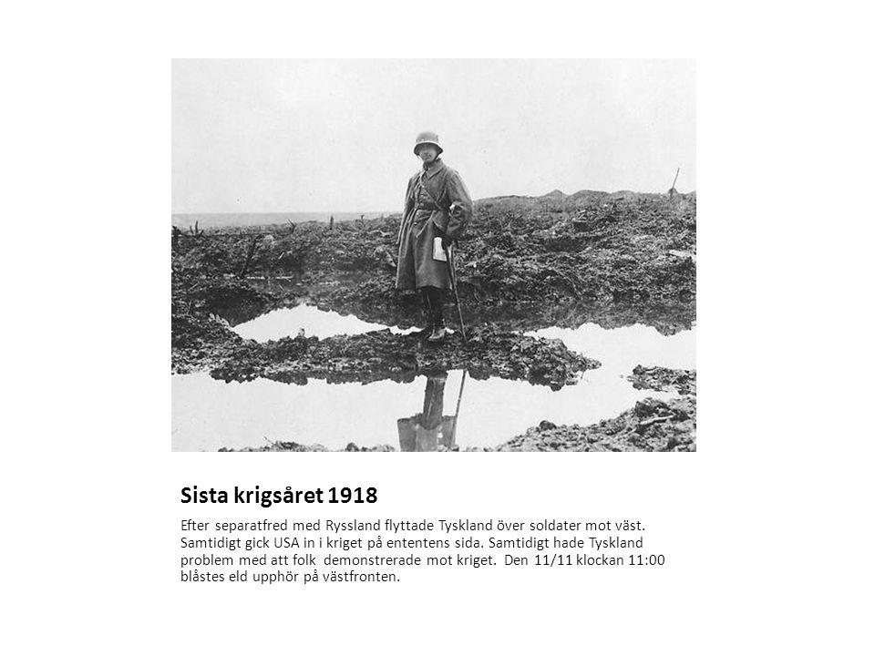 Sista krigsåret 1918 Efter separatfred med Ryssland flyttade Tyskland över soldater mot väst.
