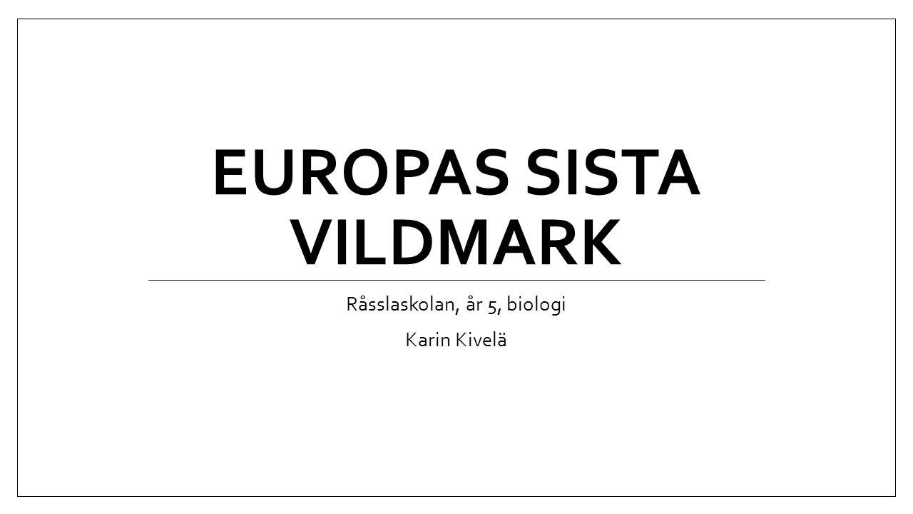EUROPAS SISTA VILDMARK Råsslaskolan, år 5, biologi Karin Kivelä