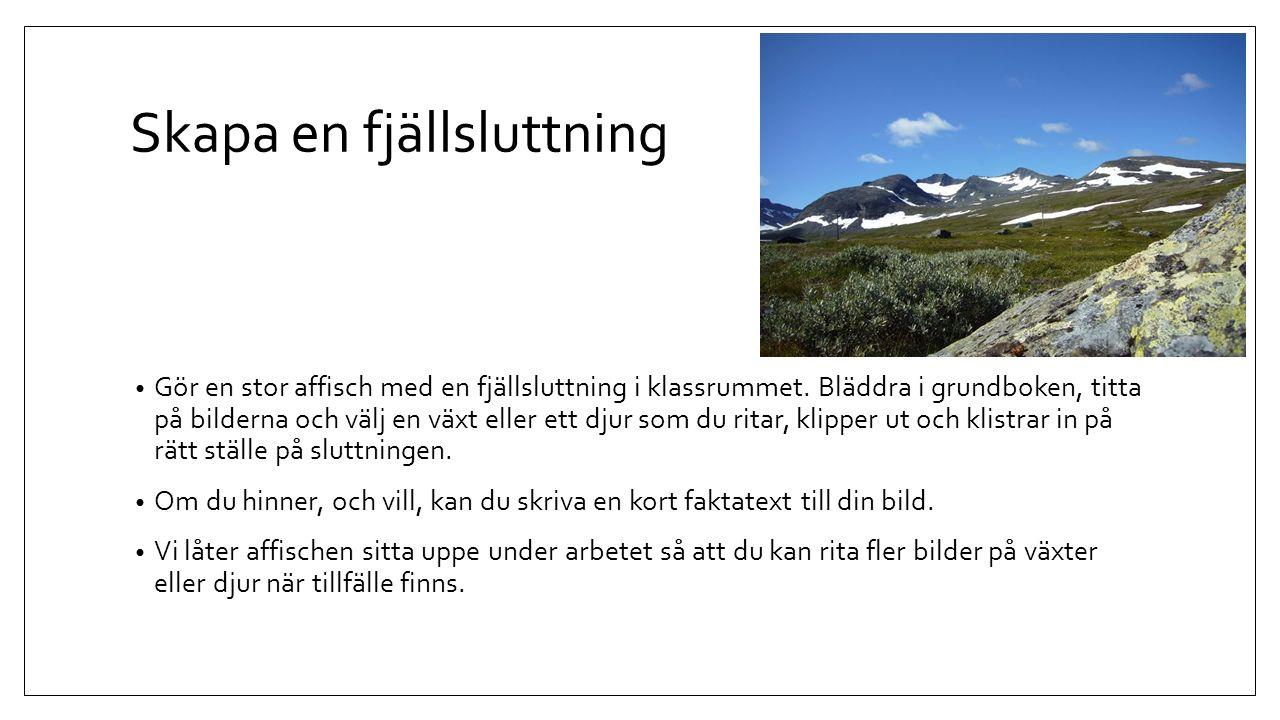 Glaciär – Kebnepakte glaciär http://sli.se/apps/sli/prodinfo.php?db=10&article=U101577-01 Titta på en karta över världen var de stora bergskedjorna ligger.
