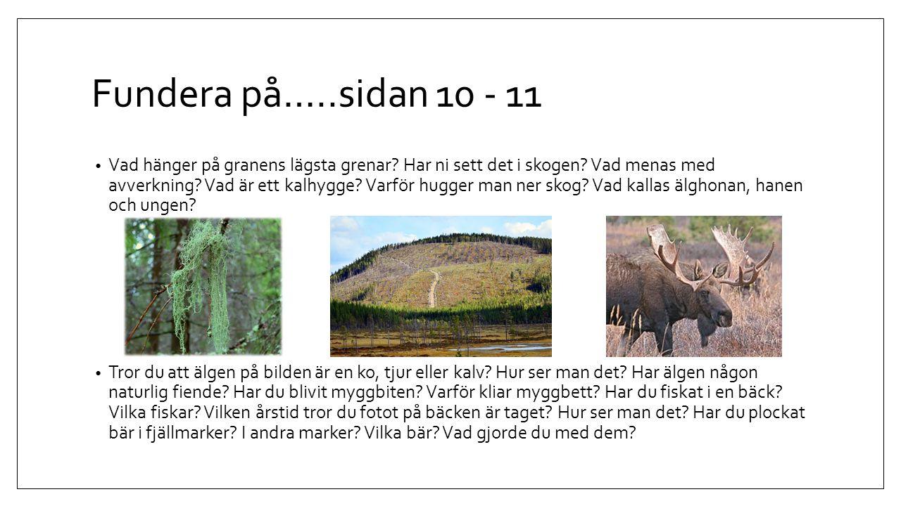 Fundera på…..sidan 10 - 11 Vad hänger på granens lägsta grenar? Har ni sett det i skogen? Vad menas med avverkning? Vad är ett kalhygge? Varför hugger
