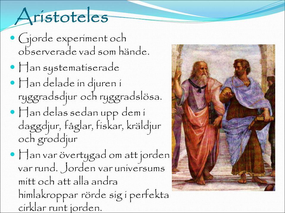 Aristoteles Gjorde experiment och observerade vad som hände.