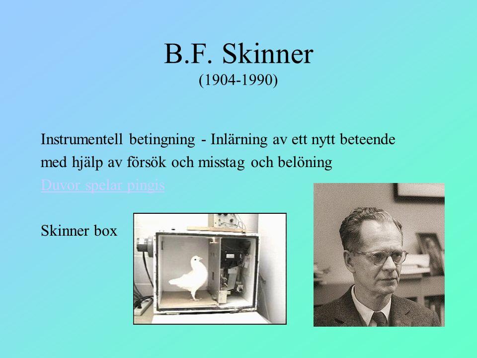 B.F. Skinner (1904-1990) Instrumentell betingning - Inlärning av ett nytt beteende med hjälp av försök och misstag och belöning Duvor spelar pingis Sk