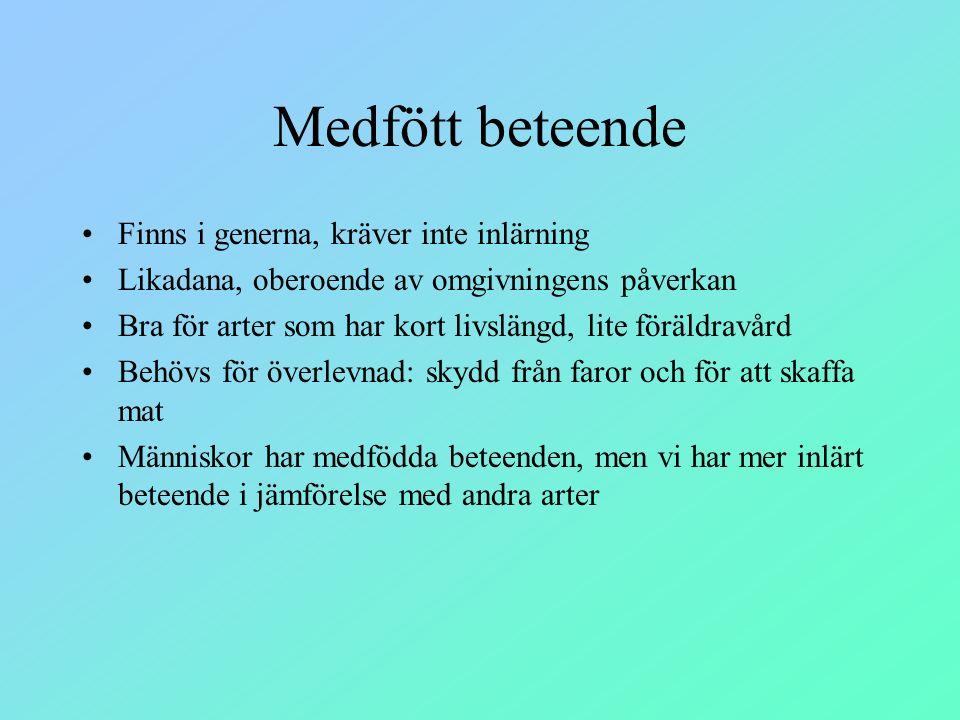 Medfött beteende Finns i generna, kräver inte inlärning Likadana, oberoende av omgivningens påverkan Bra för arter som har kort livslängd, lite föräld