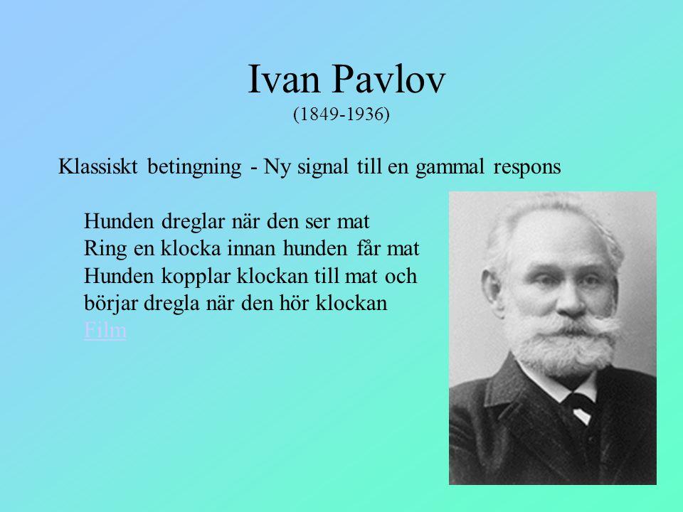 Ivan Pavlov (1849-1936) Klassiskt betingning - Ny signal till en gammal respons Hunden dreglar när den ser mat Ring en klocka innan hunden får mat Hun