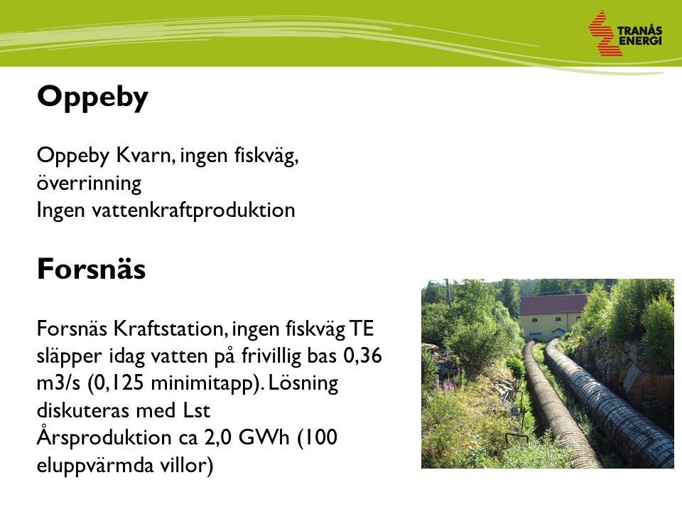 Oppeby Oppeby Kvarn, ingen fiskväg, överrinning Ingen vattenkraftproduktion Forsnäs Forsnäs Kraftstation, ingen fiskväg TE släpper idag vatten på frivillig bas 0,36 m3/s (0,125 minimitapp).