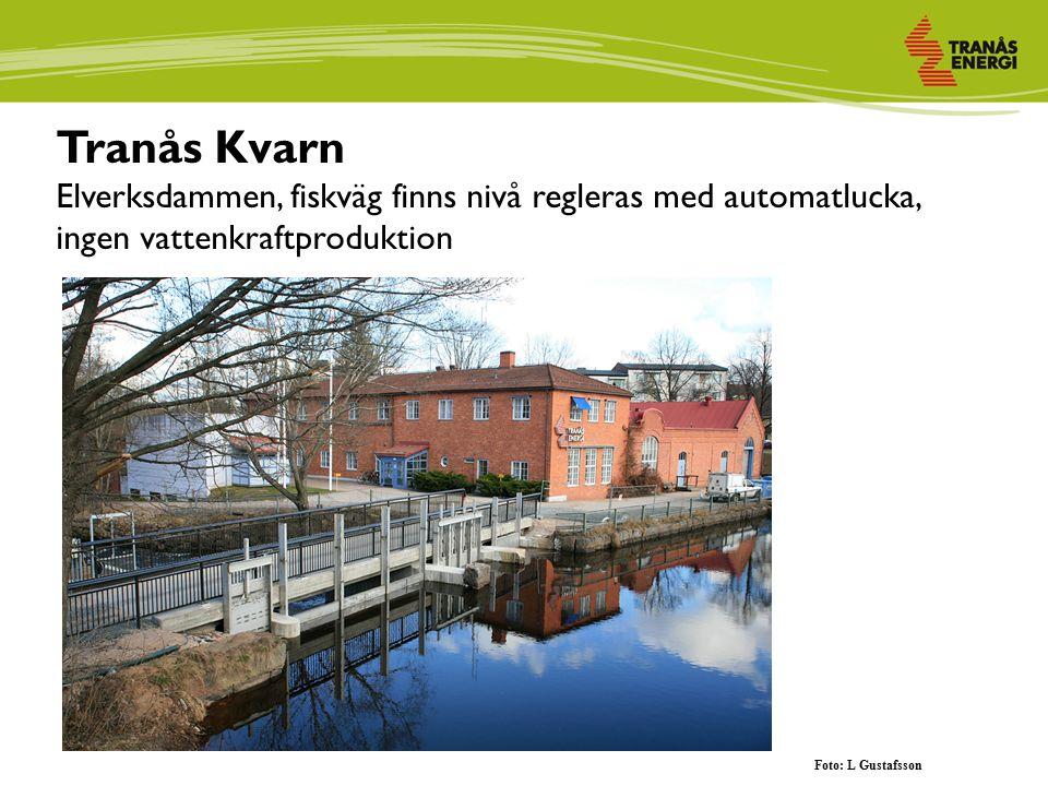 Tranås Kvarn Elverksdammen, fiskväg finns nivå regleras med automatlucka, ingen vattenkraftproduktion Foto: L Gustafsson