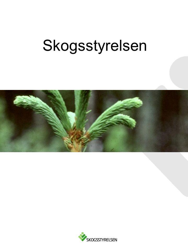 Skogsstyrelsen