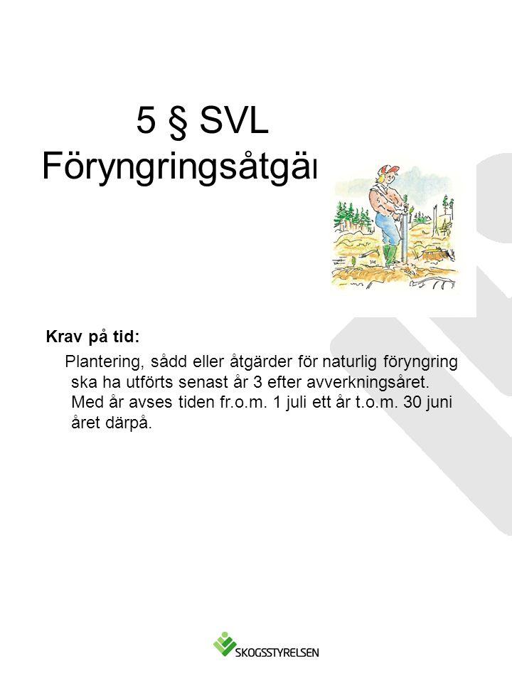 5 § SVL Föryngringsåtgärder Krav på tid: Plantering, sådd eller åtgärder för naturlig föryngring ska ha utförts senast år 3 efter avverkningsåret. Med