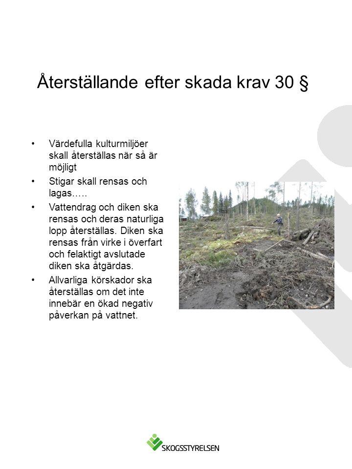 Återställande efter skada krav 30 § Värdefulla kulturmiljöer skall återställas när så är möjligt Stigar skall rensas och lagas….. Vattendrag och diken