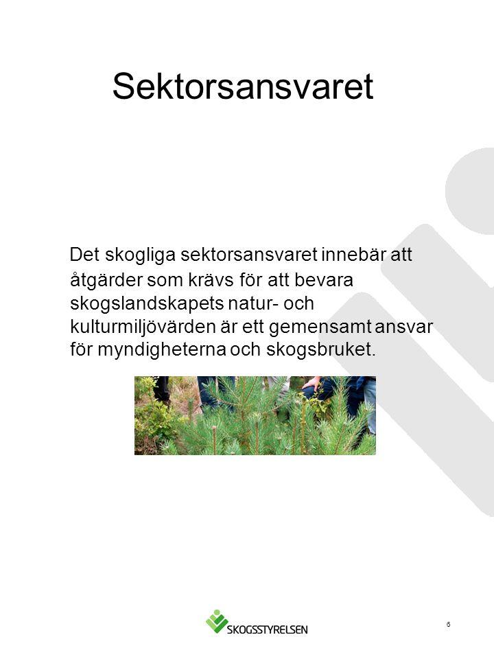 Frihet under ansvar Den svenska skogspolitiken ger skogsägarna stor frihet att agera inom givna ramar.